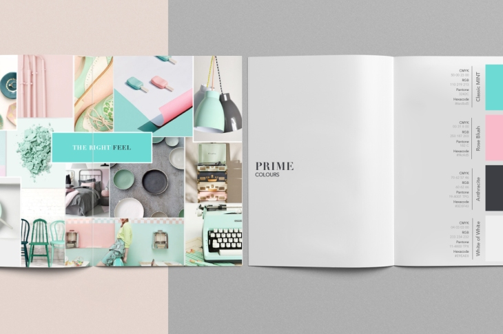 BrandGuide-Color